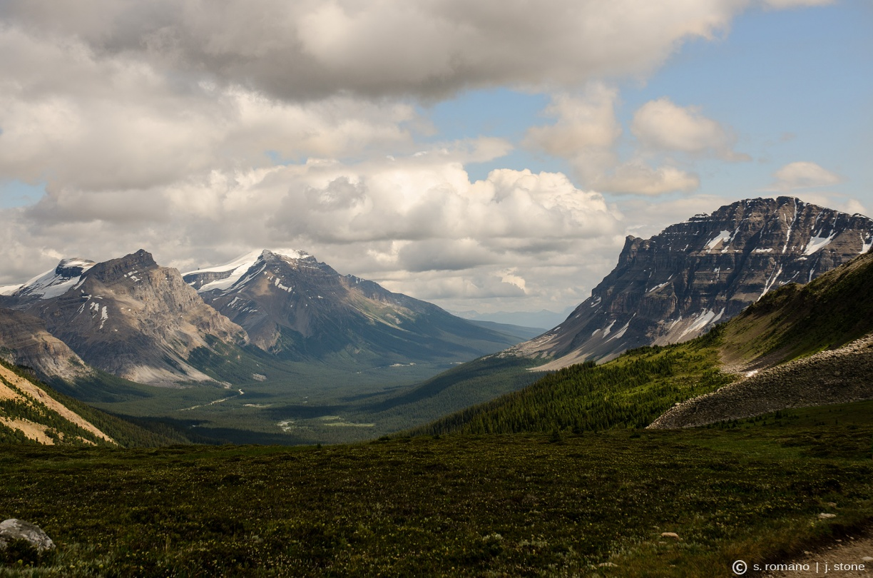 Bow Peak & Bow Valley