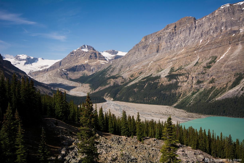 Peyto Peak & Peyto Glacier