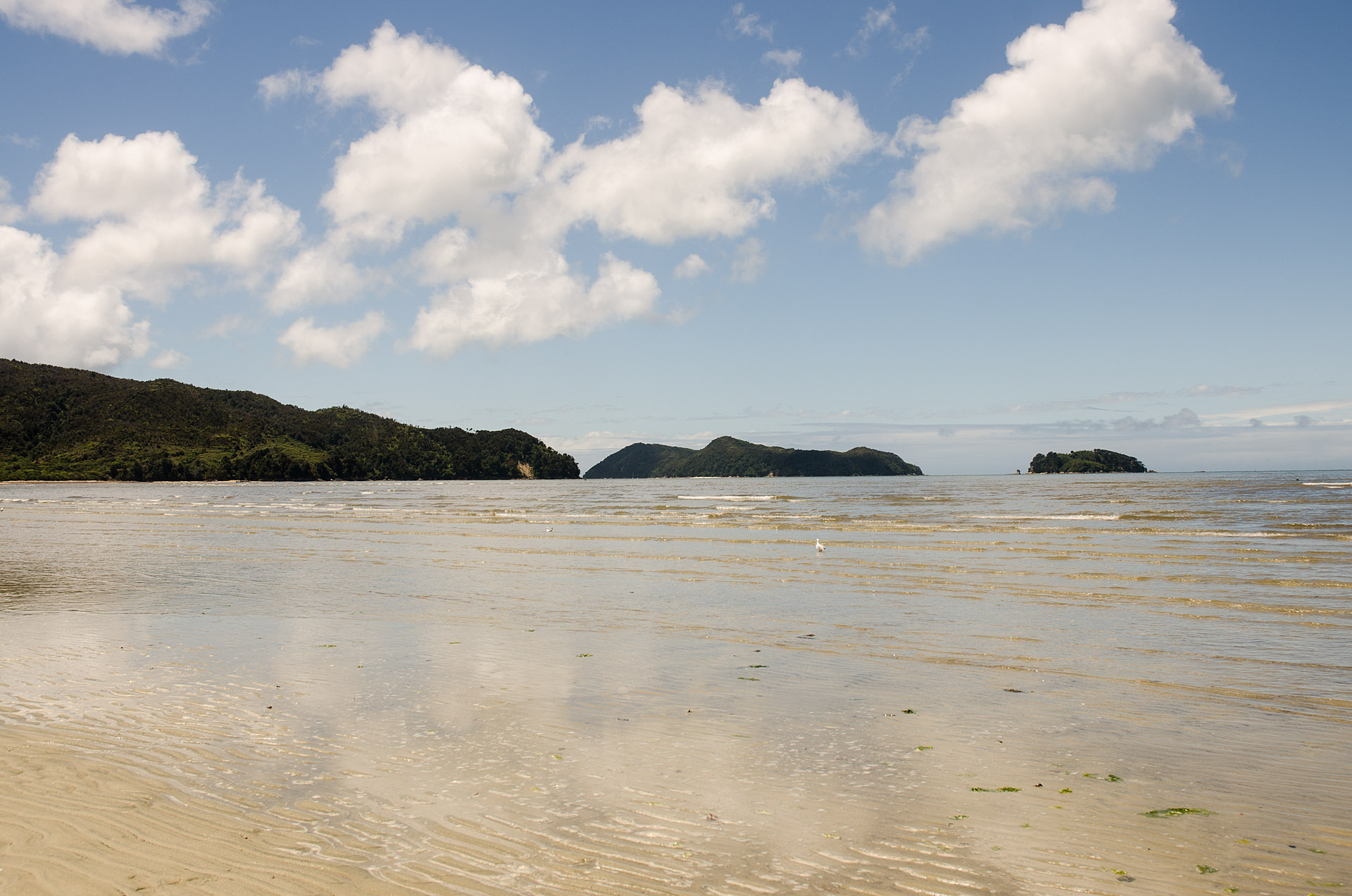 Adele & Fisherman Island