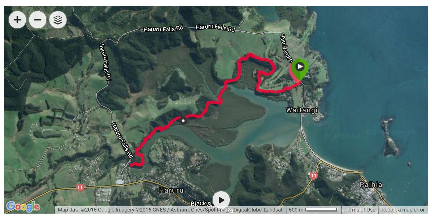 Waitangi Track Satellite