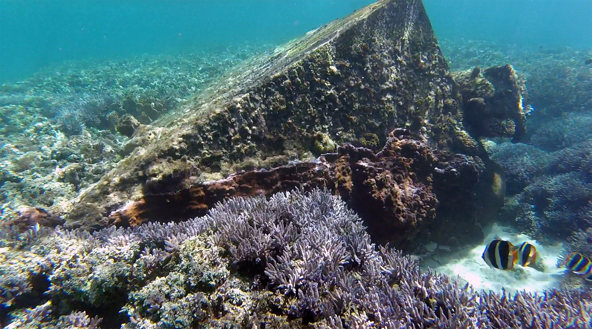 Wreck of 'The Favorite'