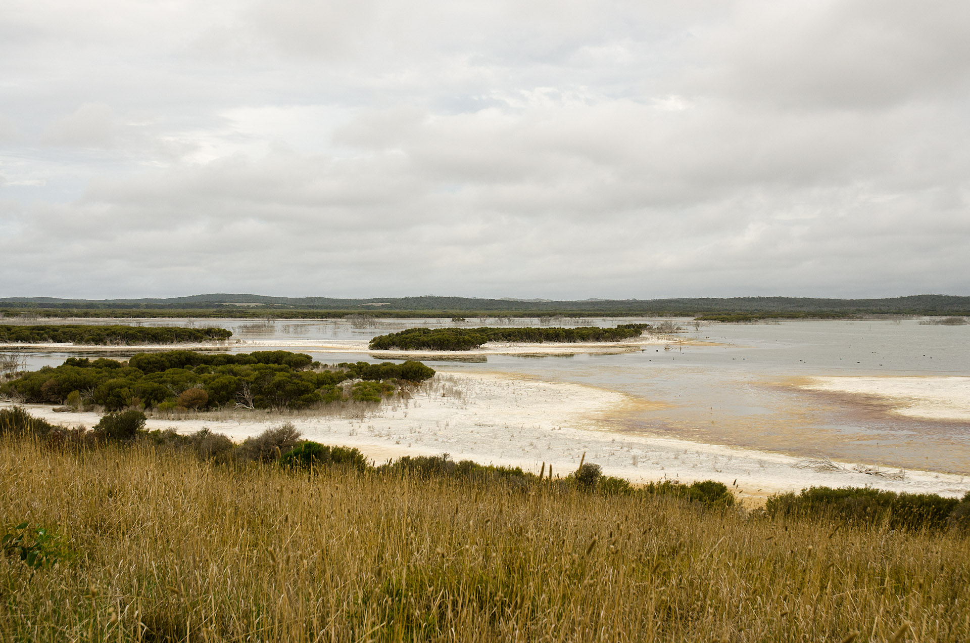 Murray Lagoon from Bald Hill