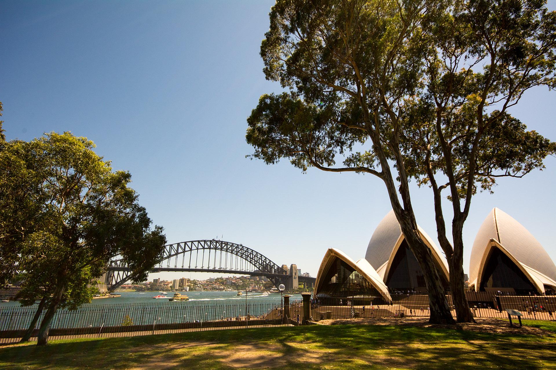 Sydney Harbour from Botanic Gardens
