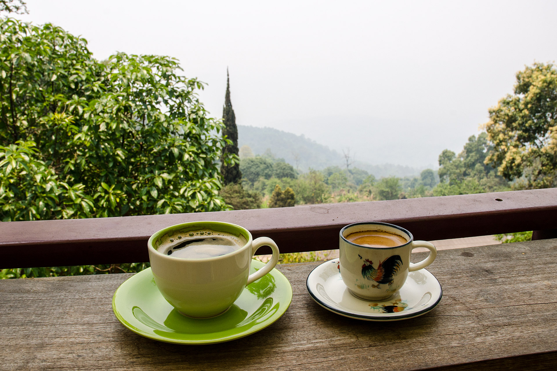 Hilltribe coffee