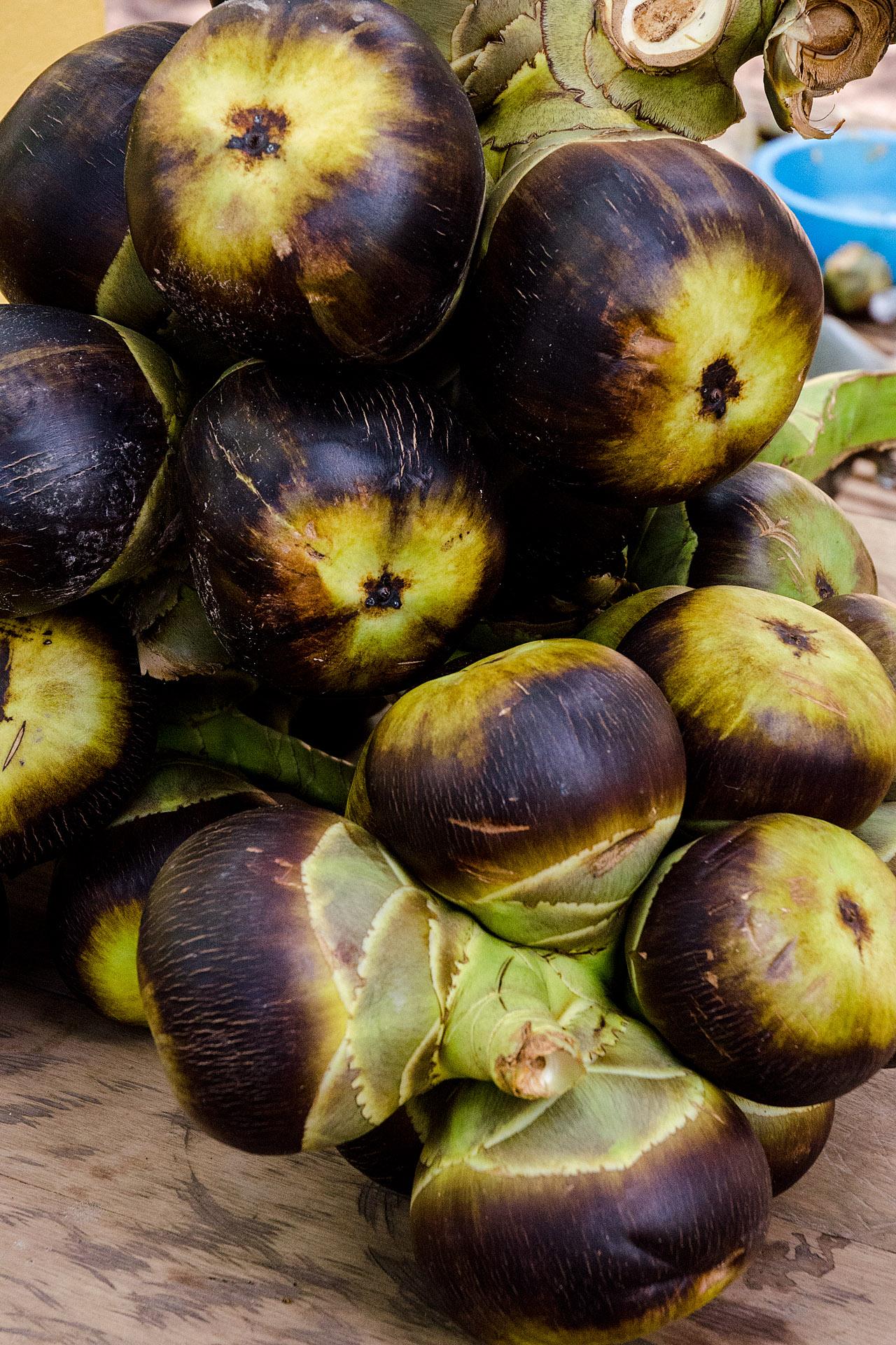 Sugar (palmyra) palm fruit