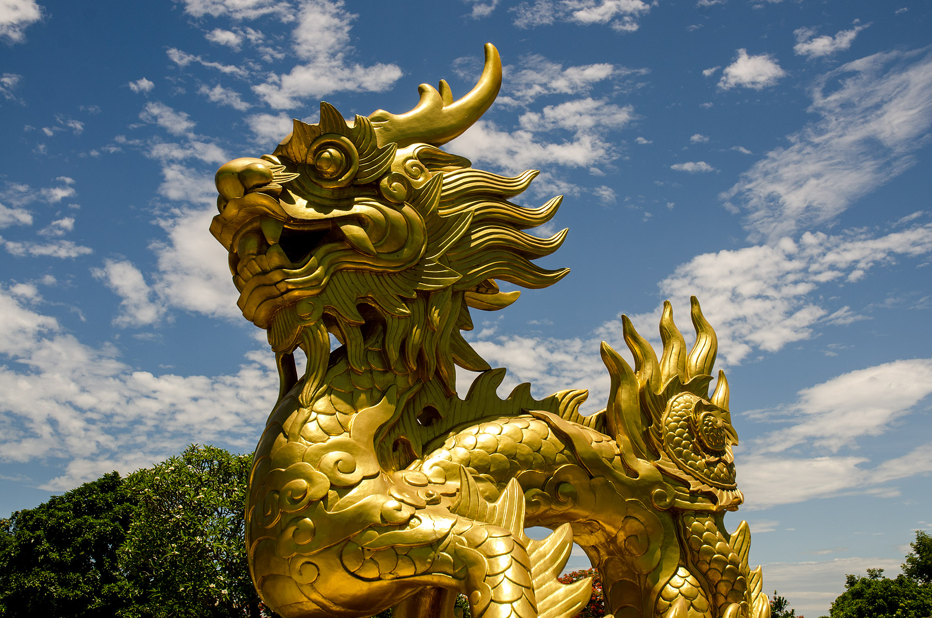 Golden dragon (emblem of Nguyen Dynasty)