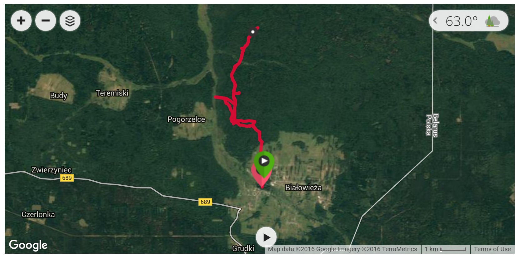 Bialowieza Forest hike - Satellite