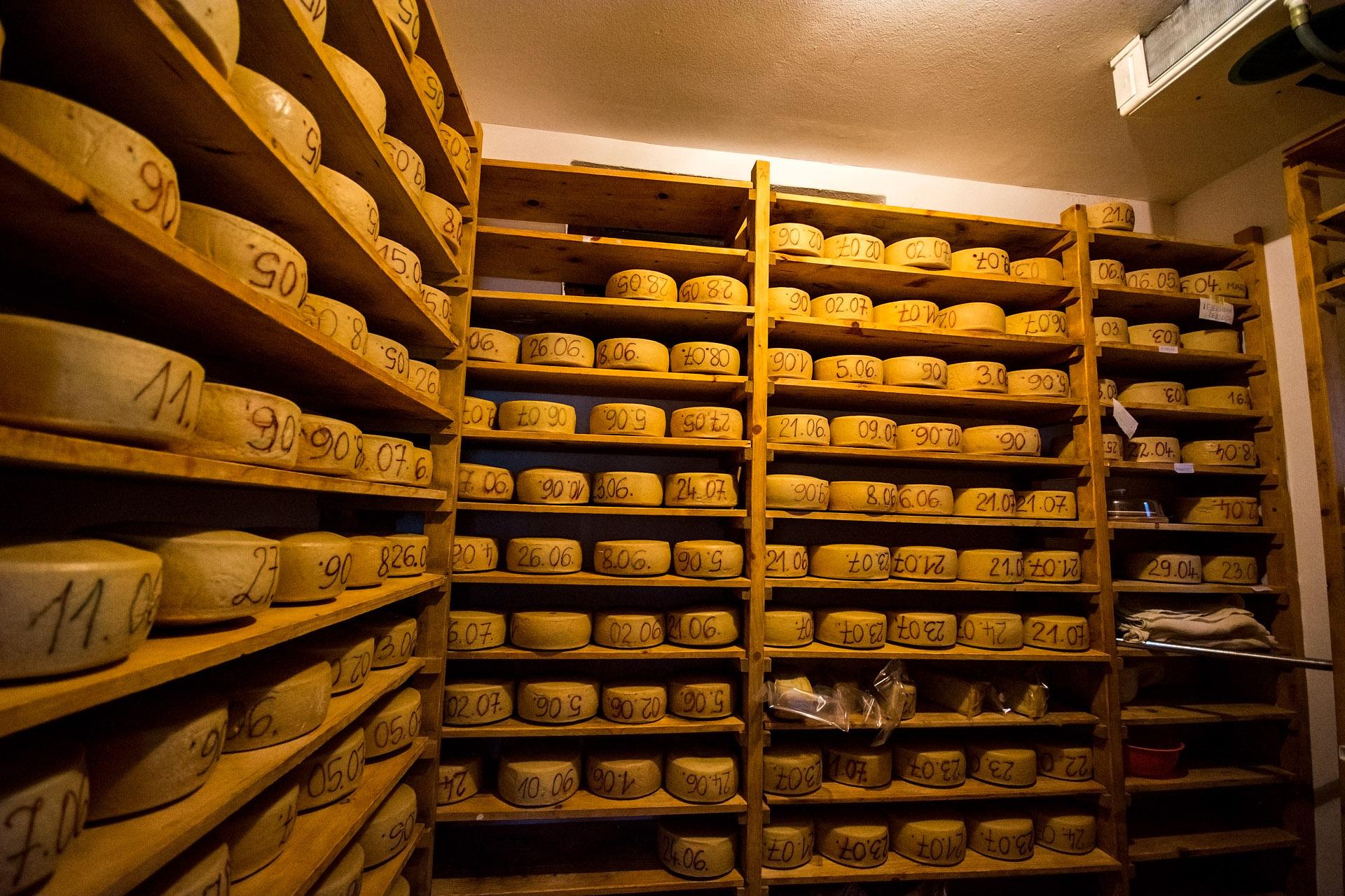 Bovec cheese (Bovski sir)