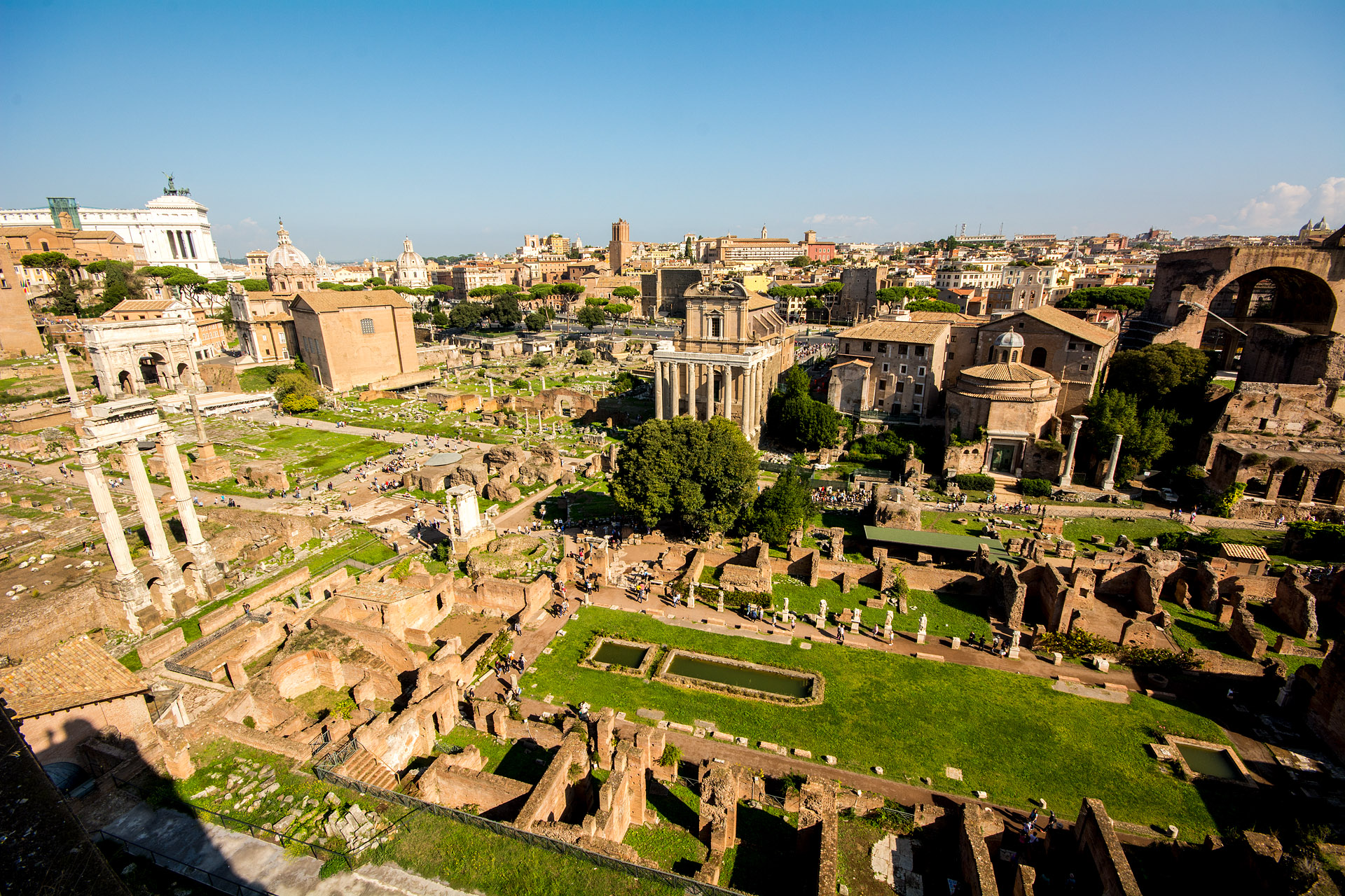 The Forum from Palatine Hill