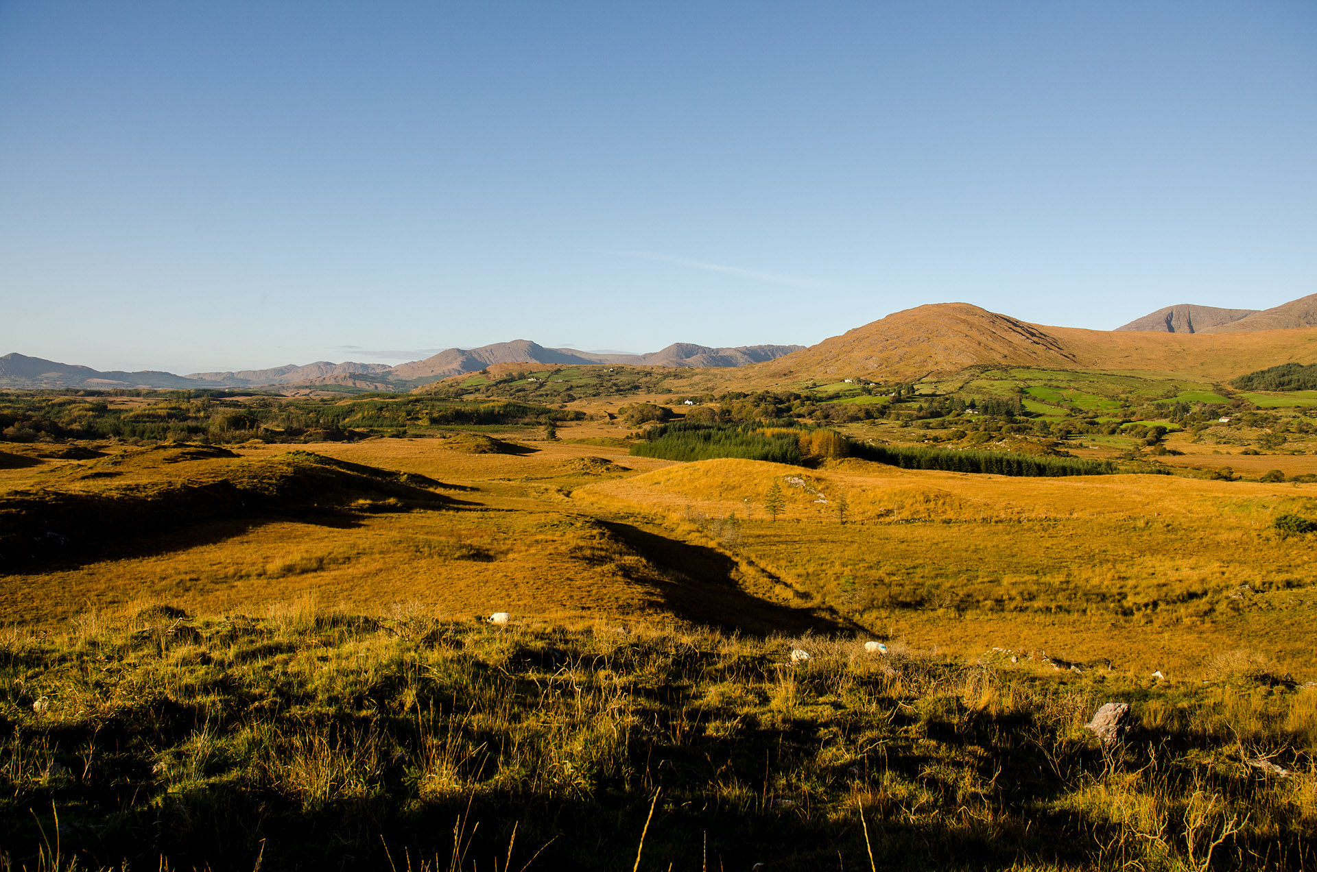 Our Sneem farm country