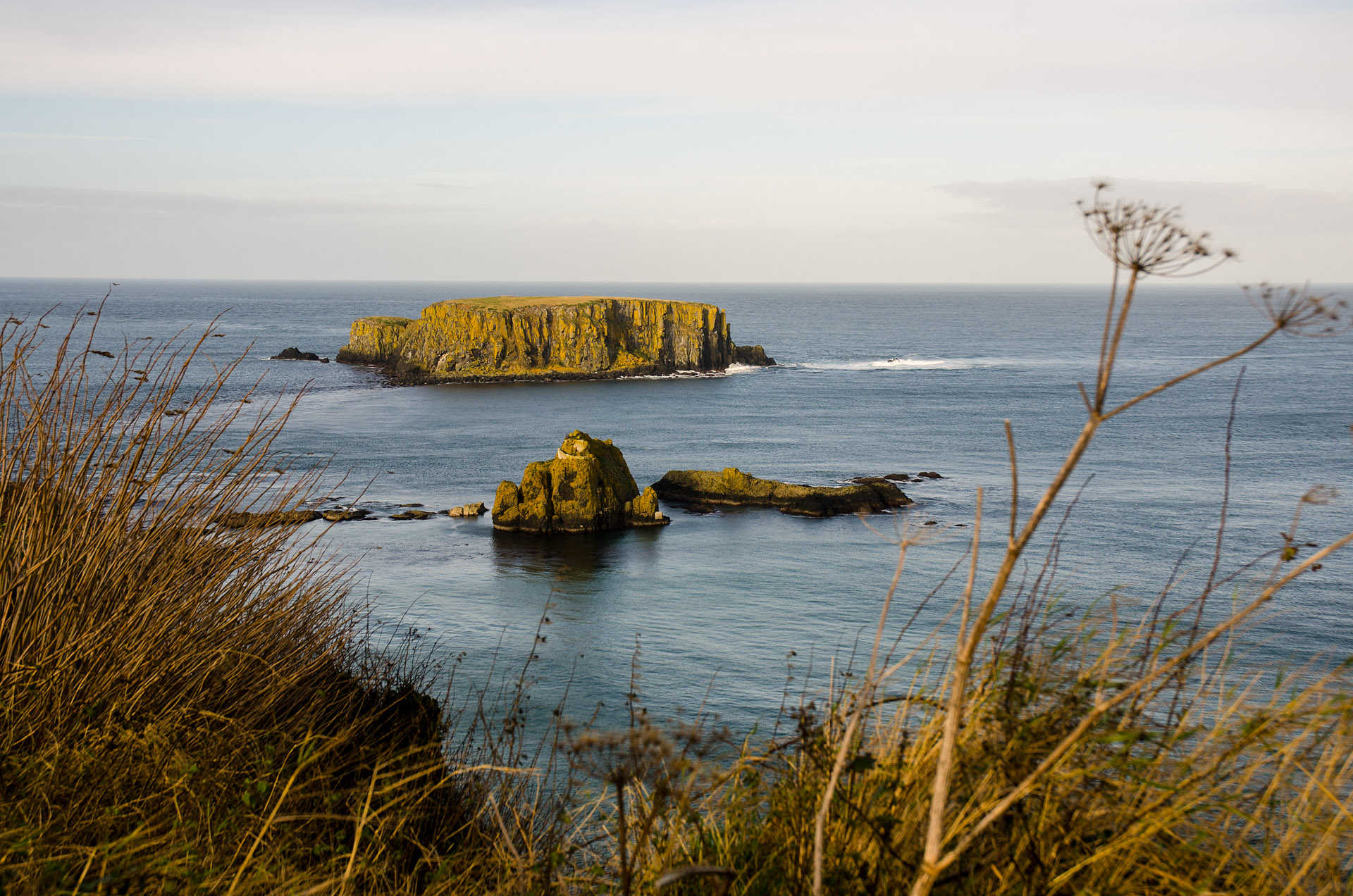 Sheep Island (Ballintoy)