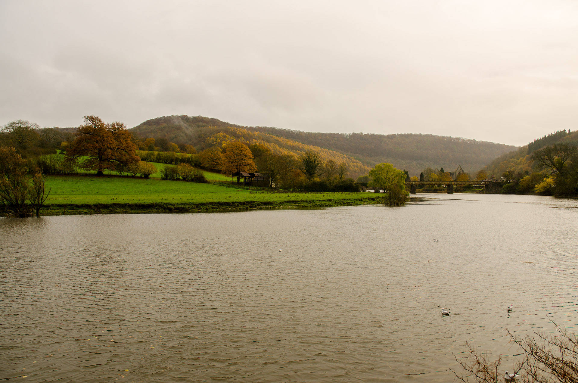 Wye River Valley