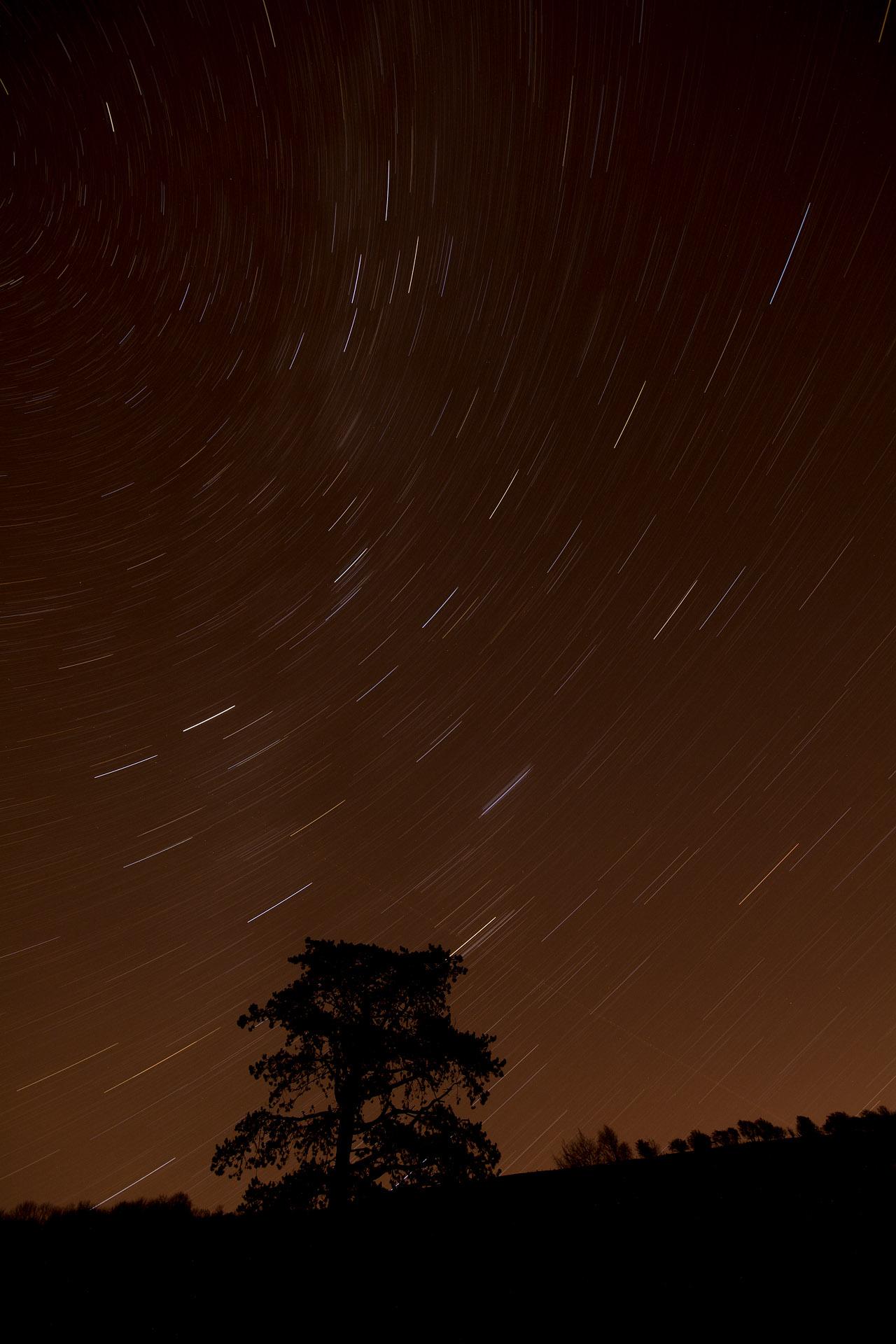 Night sky (30 minute exposure)
