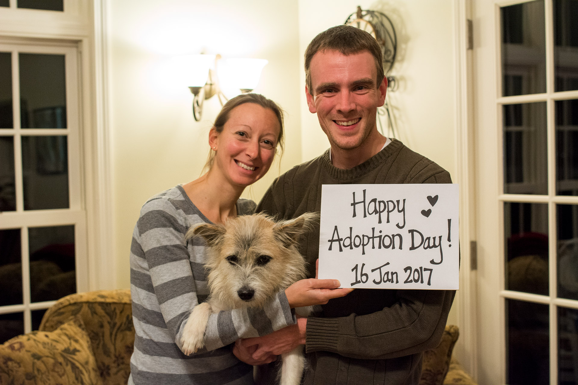 Happy Adoption Day, Sanchez!