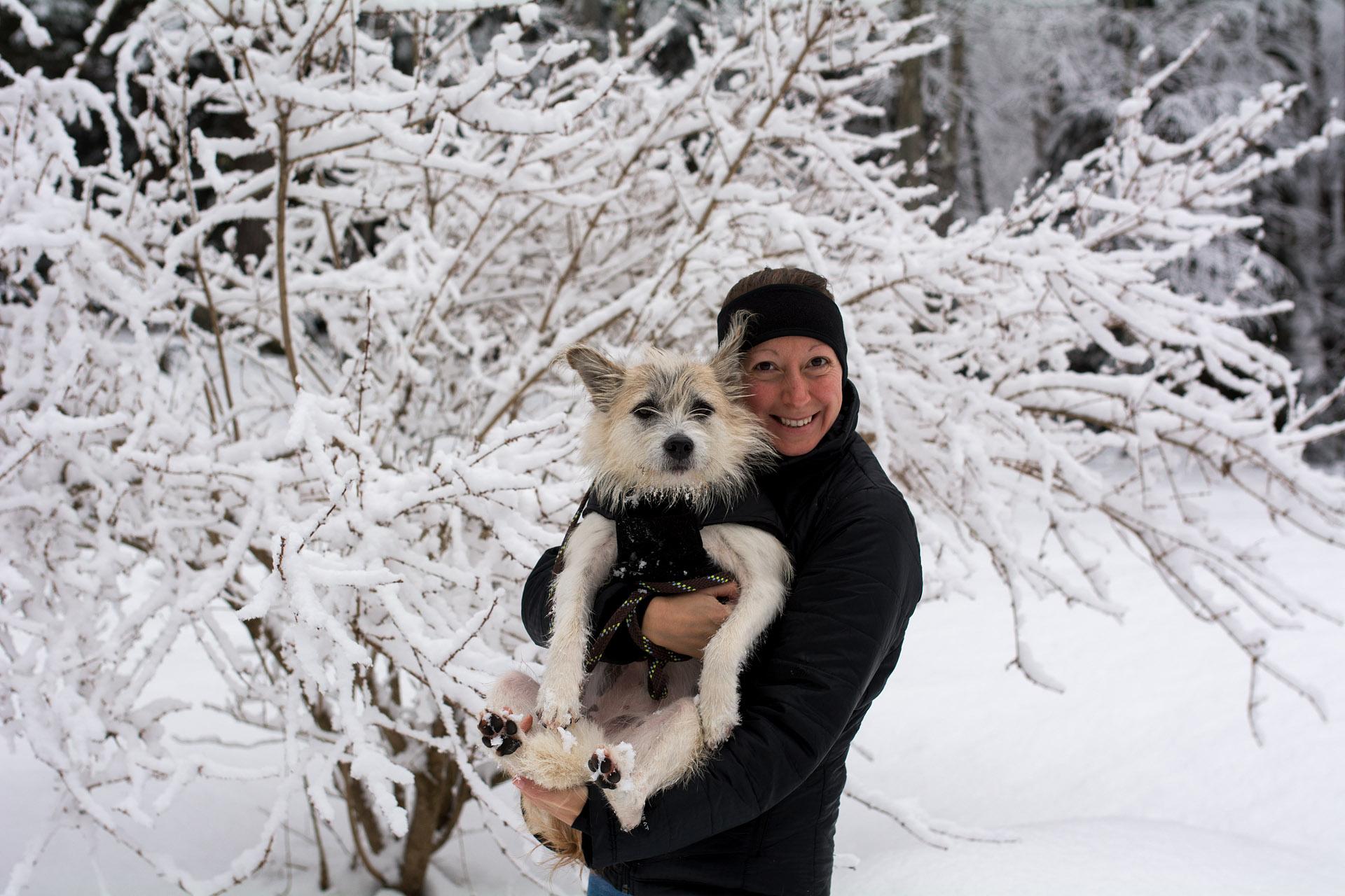 Wintertime in New Hampshire