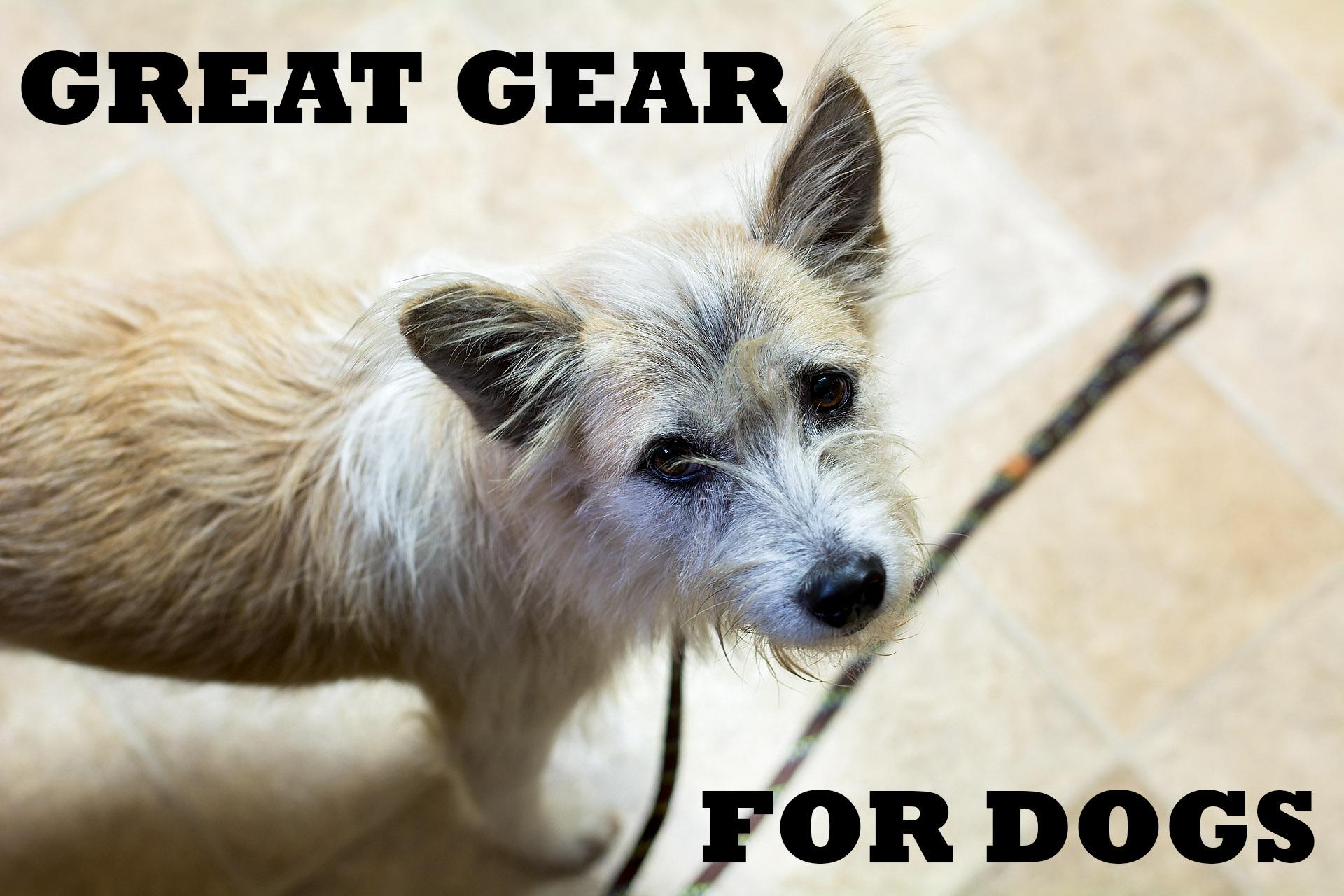 Pooch Picks - Great Gear for Dogs