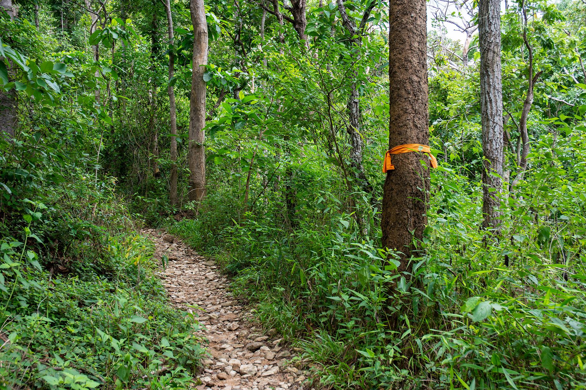 Monk's Trail