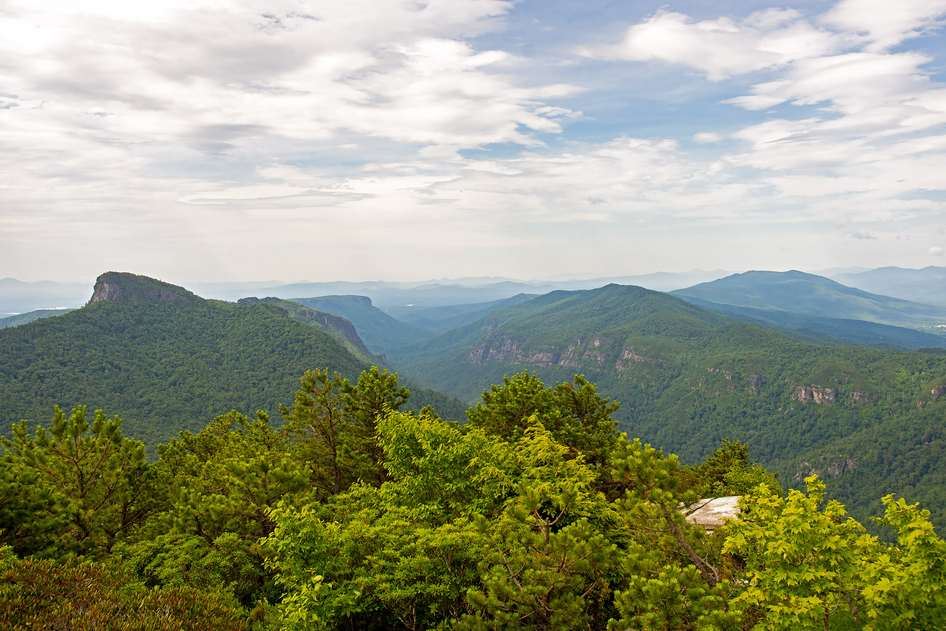 Overlooking Table Mountain & Linville Gorge