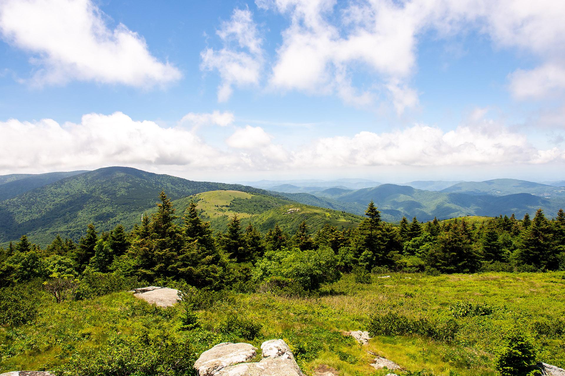 View from Grassy Ridge Bald