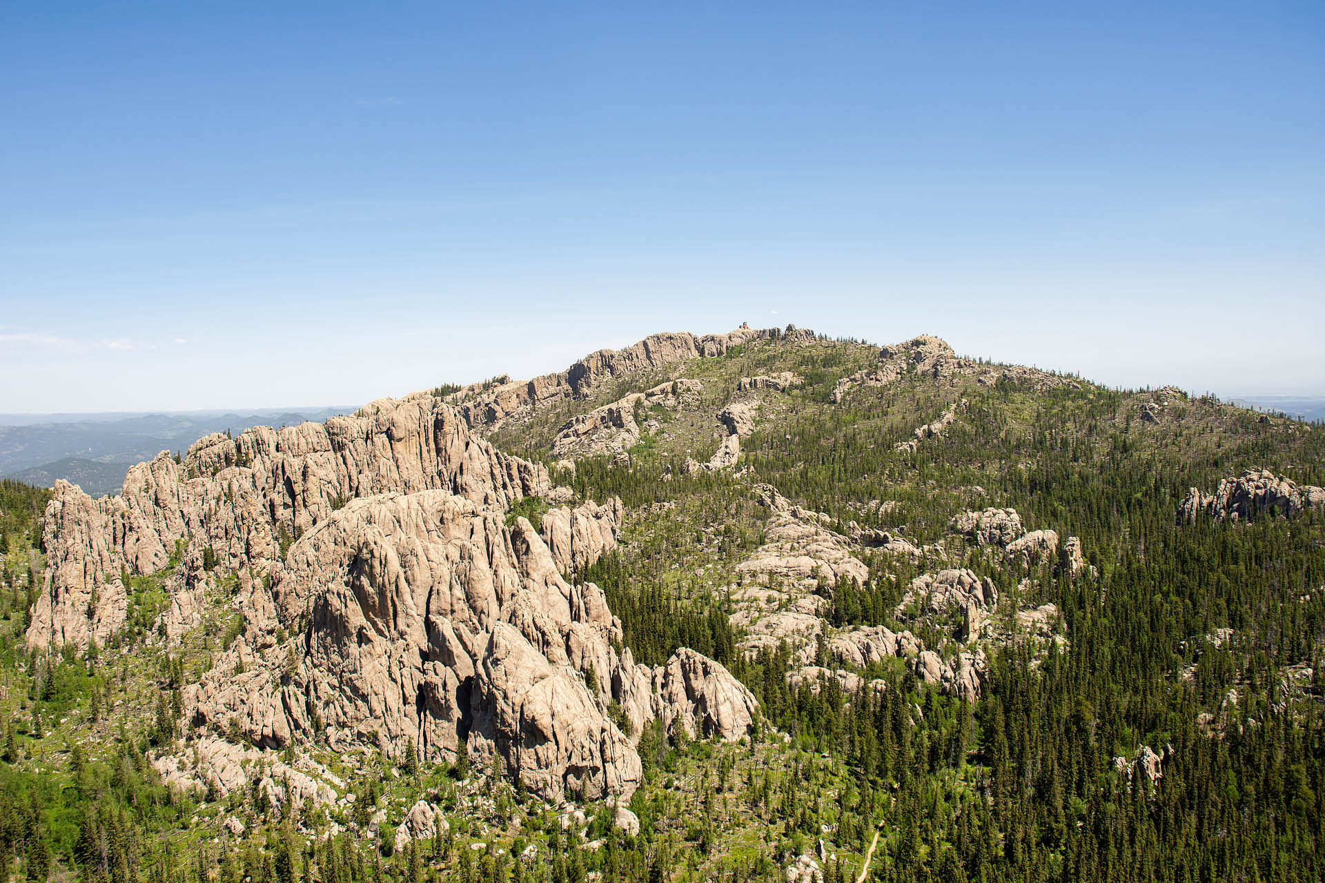 Looking north to Black Elk Peak