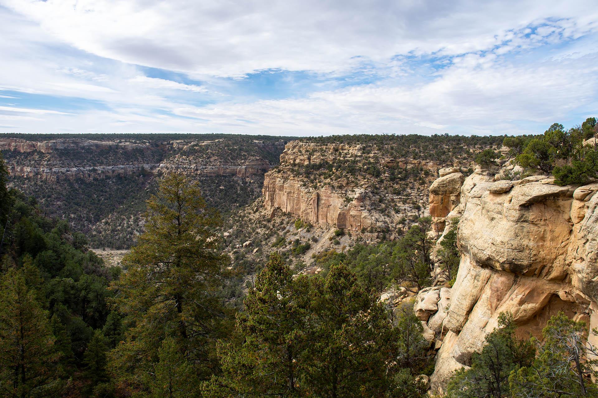 Spruce Canyon