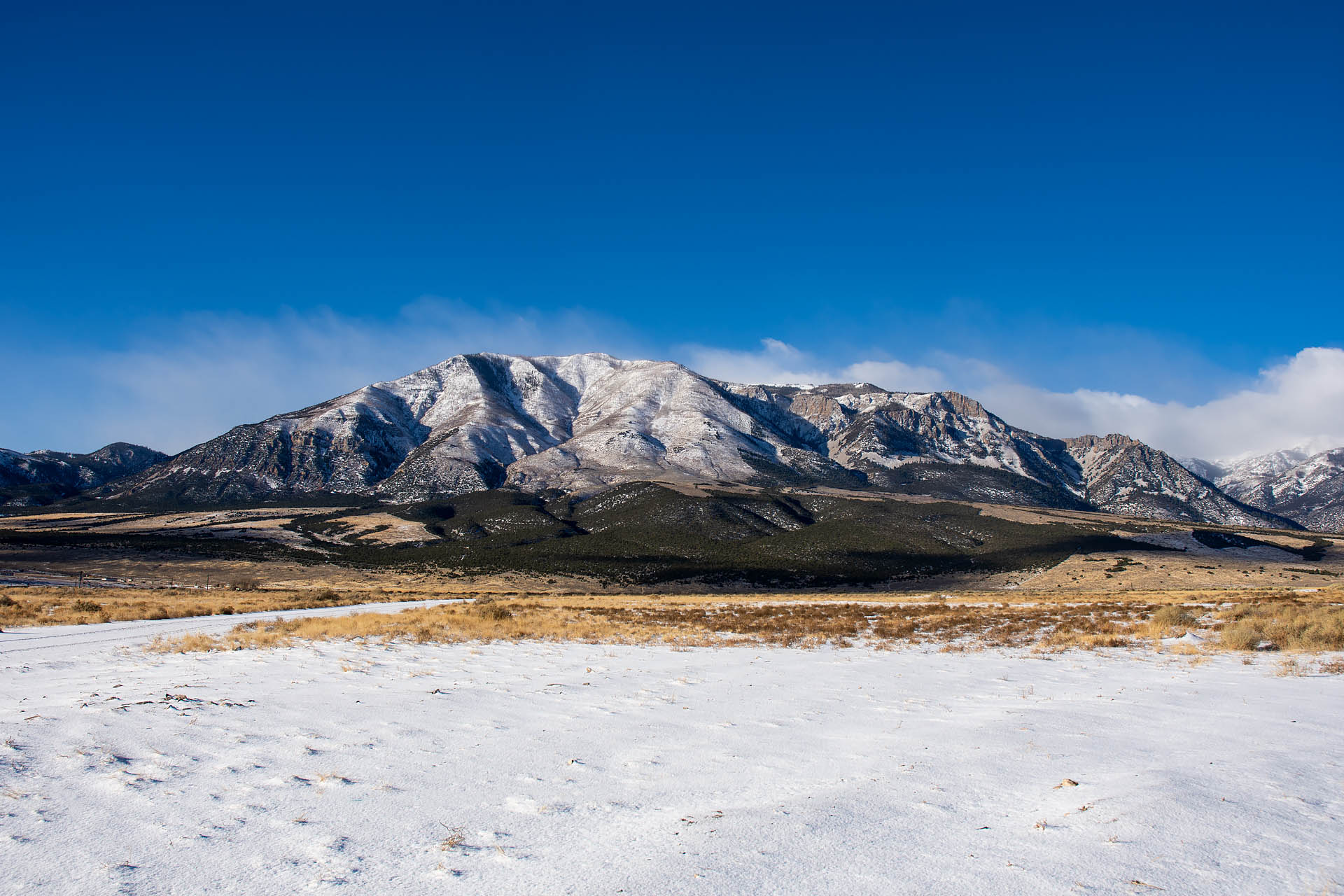 Mt. Brigham