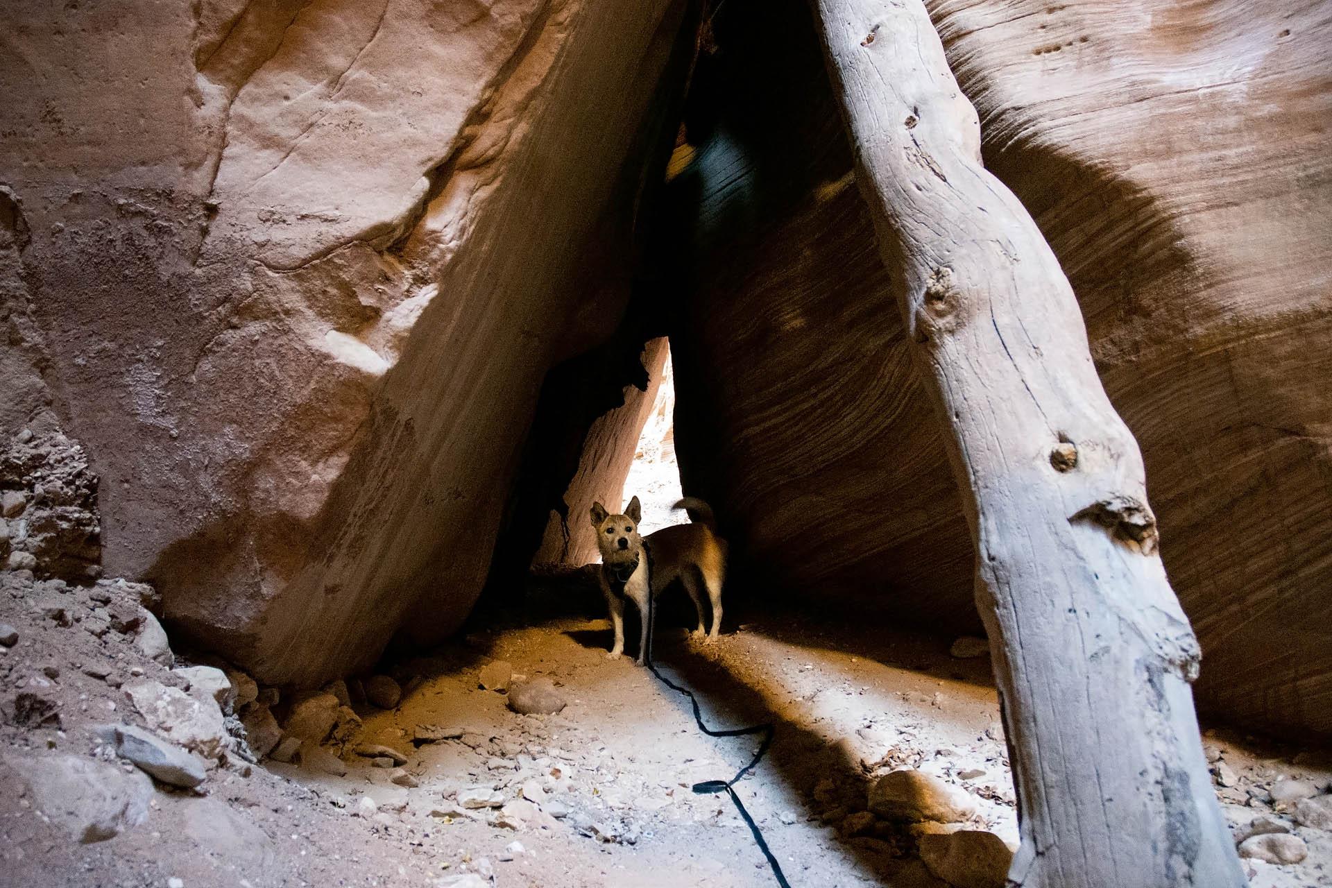 Finding a secret passageway