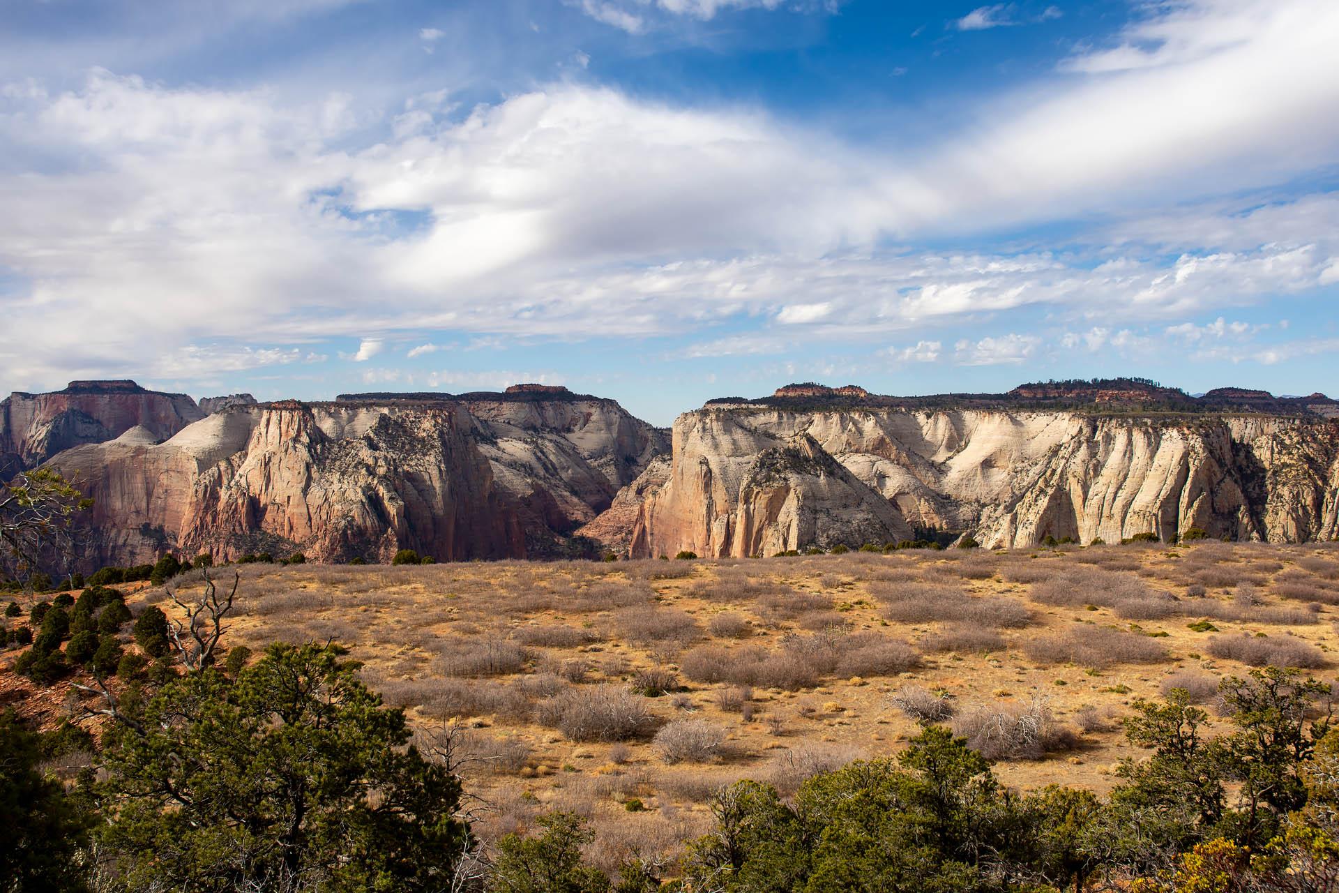 Zion Canyon East Rim