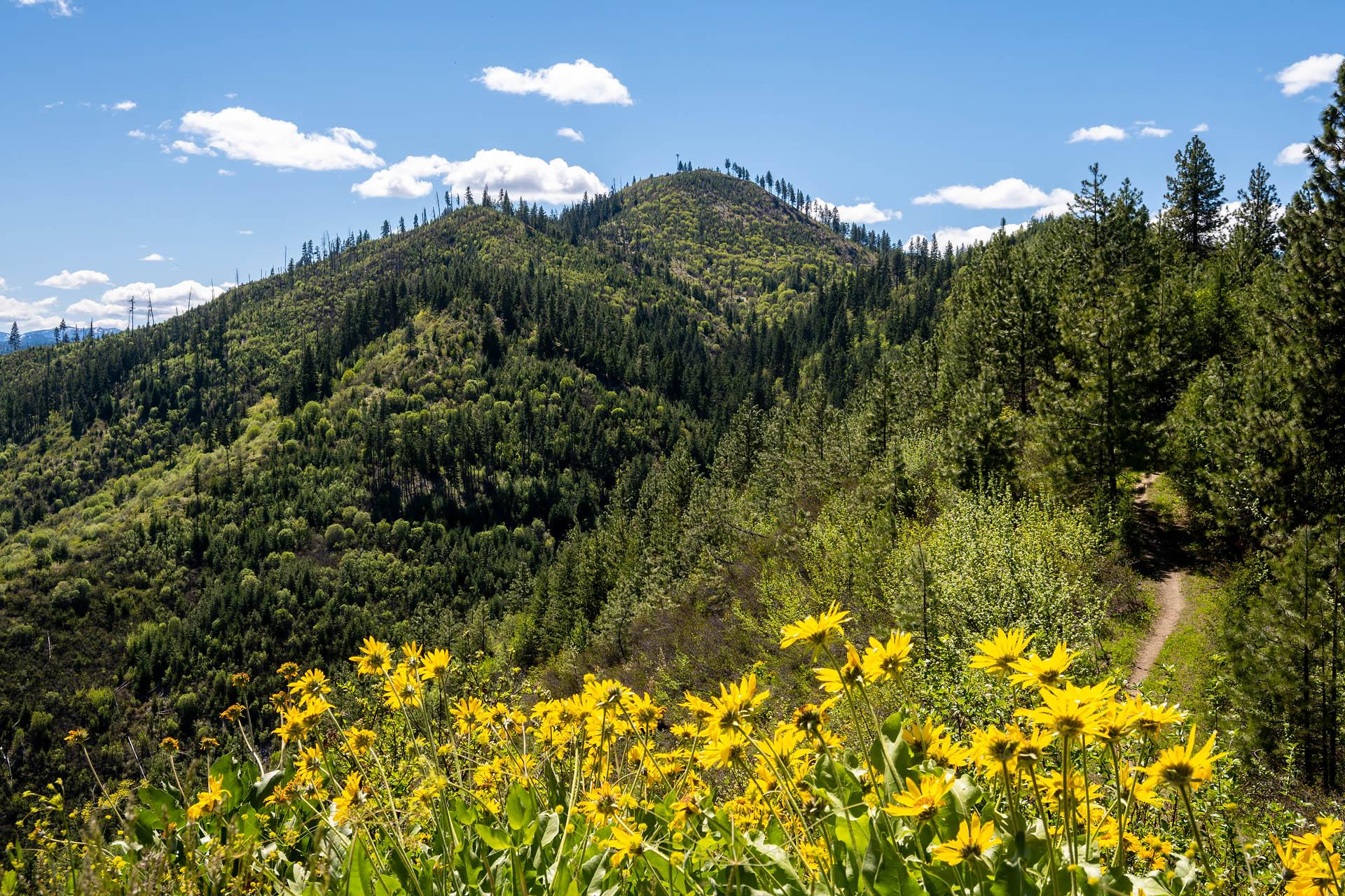 Boundary Butte