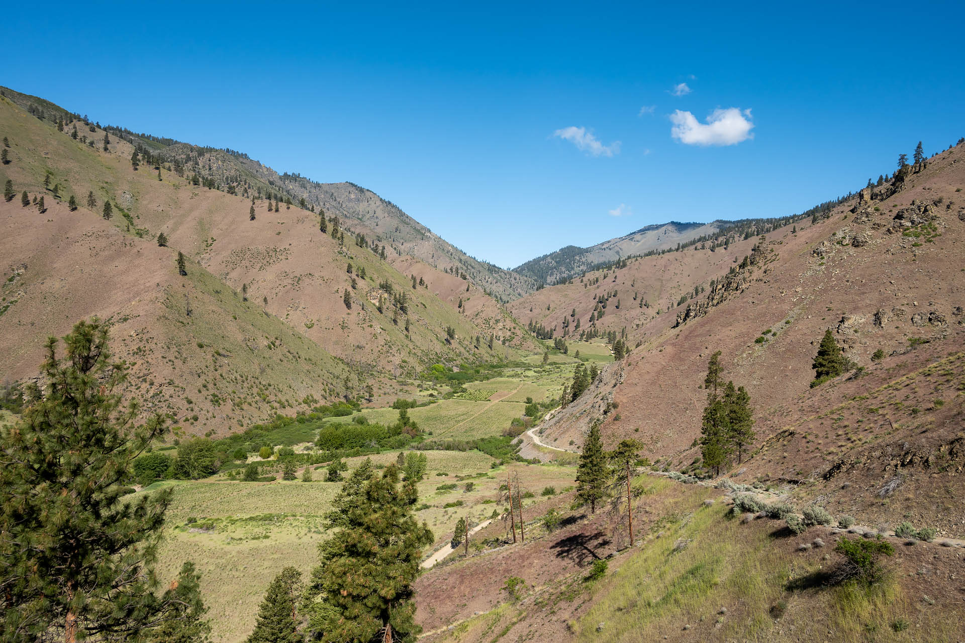 Swakane Canyon