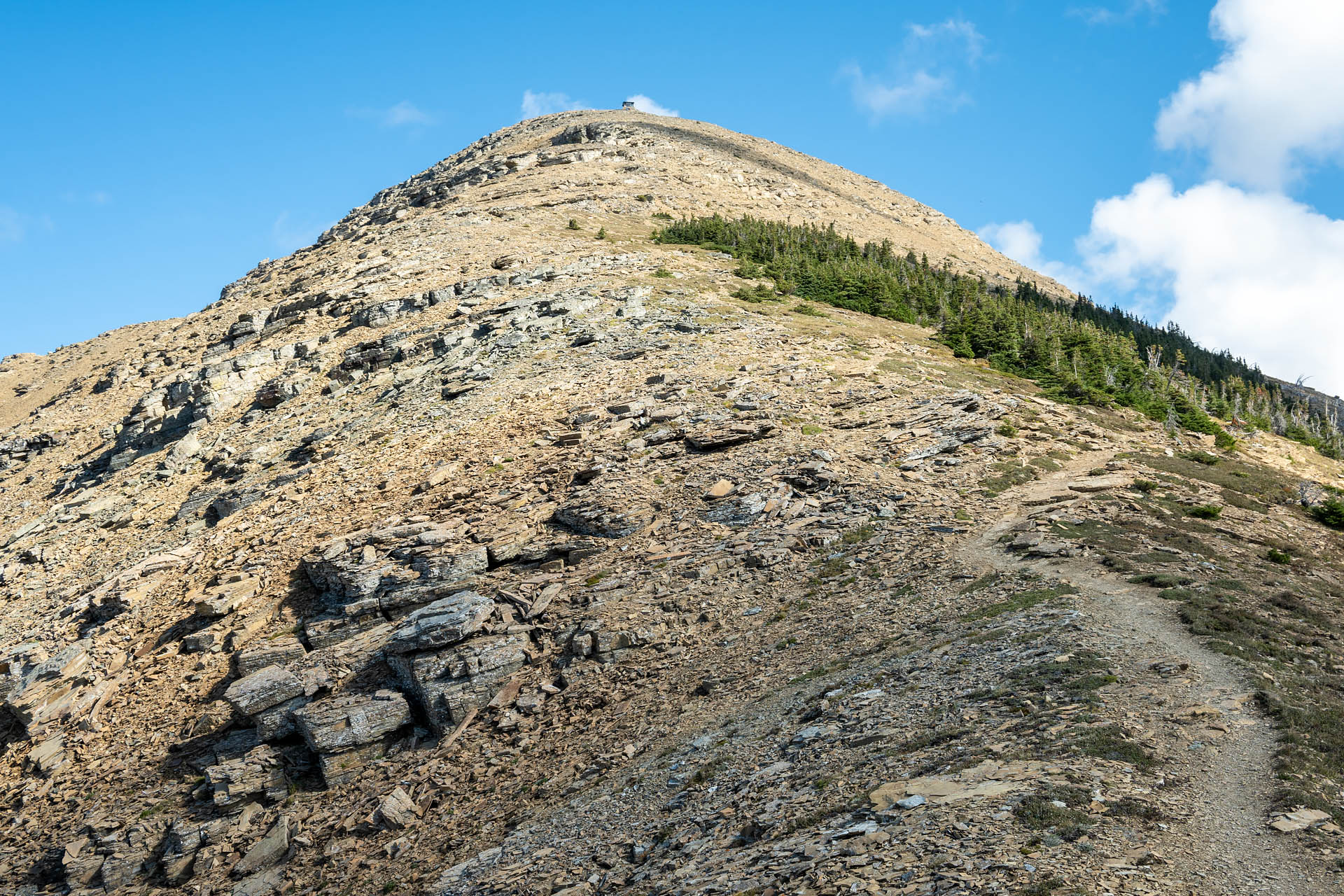 Spur to Swiftcurrent Lookout