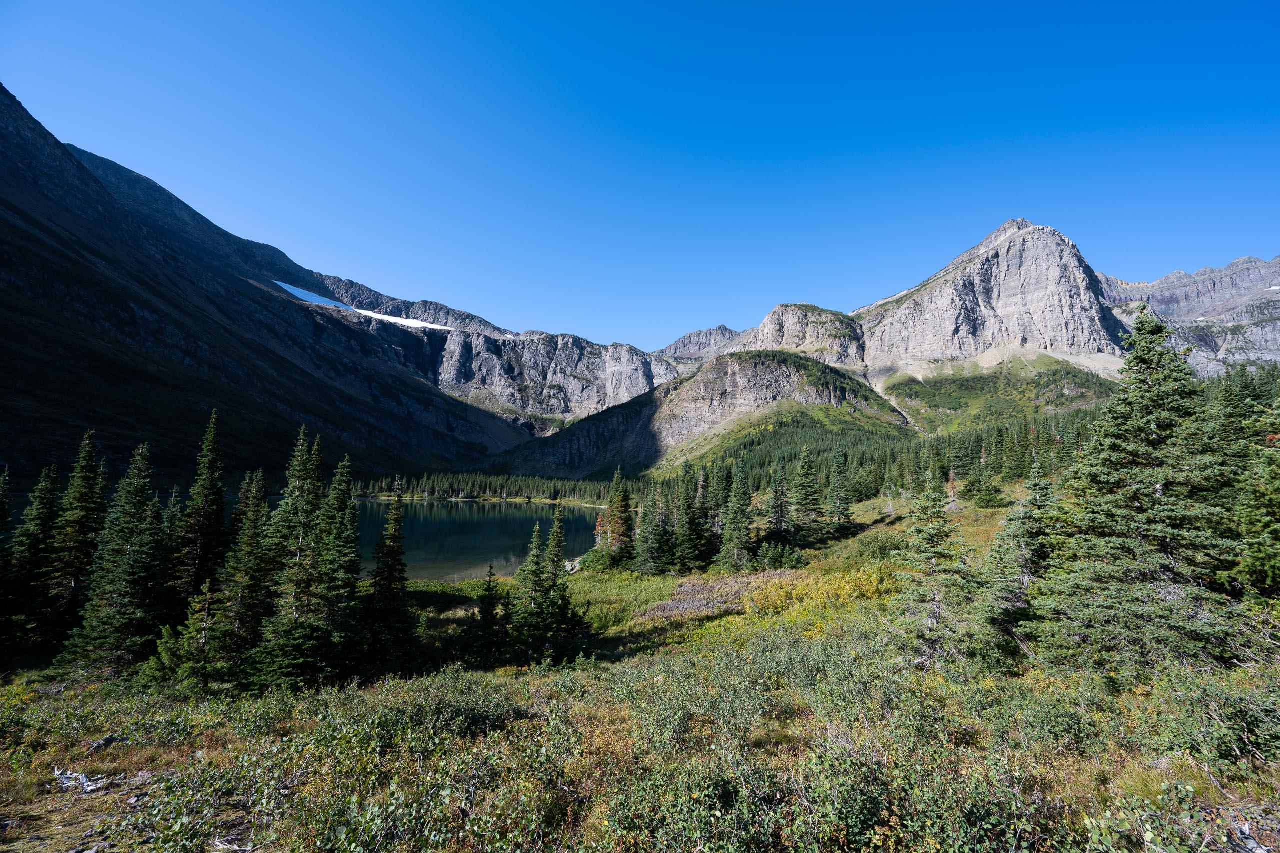 Swiftcurrent Creek Valley